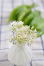 Fresh wild garlic leaves with flowers Stock Images