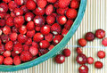 Fresh wild strawberries basket with free delicacy from the scandinavian forests Royalty Free Stock Photos
