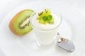 Fresh yogurt with kiwi fruit in glass beaker on white plate closeup horizontal copy space Royalty Free Stock Photo