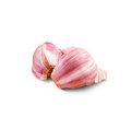Fresh young garlic professional on white background with clipping path Stock Images