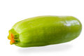 Fresh zucchini Royalty Free Stock Photo