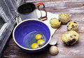 Freshly baked muffins along eggs flour sifter eggs Royalty Free Stock Photo