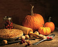 Freshly baked pie with pumpkin and cranberries Royalty Free Stock Image