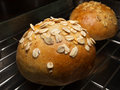 Freshly baked wholemeal buns with rolled oats topping on cooling rack Stock Photo