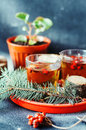 Freshly brewed tea in glass cup on blue background orange hot drink selective focus fresh herbal tea with tincture of red berri Stock Image