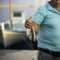 Freshly Caught Fish. Samos Royalty Free Stock Photo