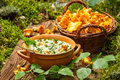 Freshly collected mushrooms in the woods and cooked with cream on old wooden table Stock Images