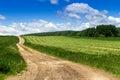 Freshly cut hay field Royalty Free Stock Photo