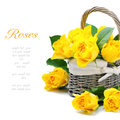 Freshly cut yellow roses in a rustic basket Stock Image