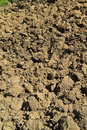Freshly dug soil earth clods background Royalty Free Stock Images