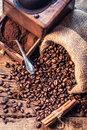 Freshly ground coffee beans in the grinder on old wooden table Stock Photography