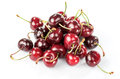 Freshly harvested cherries macro photography of on white background Stock Image