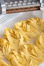 Freshly made ribbons of Italian tagliatelle pasta Royalty Free Stock Photo