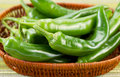Freshly picked korean peppers in basket closeup horizontal photo of fresh green with textured table cloth underneath Royalty Free Stock Photography