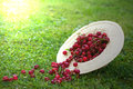 Freshly picked ripe cherries in a straw hat Royalty Free Stock Photo