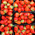 Freshly picked strawberries a background Royalty Free Stock Photos