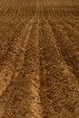 Freshly Plowed Farm Field for Agriculture Royalty Free Stock Photo
