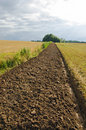 Freshly plowed field furrow. Stock Images