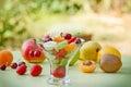 Freshly prepared fruit salad of organic Stock Photography
