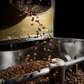 Freshly roasted coffee beans Royalty Free Stock Photo