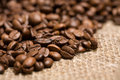 Freshly roasted coffee beans on sackcloth Royalty Free Stock Photo