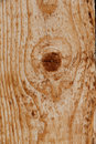Freshly sawed wood closeup of showing veins and knot Stock Photo