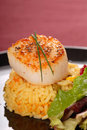 Freshly seared sea scallop on saffron rice Royalty Free Stock Images