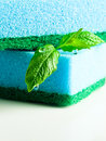 Freshness and purity blue sponge leaves of peppermint on white reflexive background Royalty Free Stock Photography