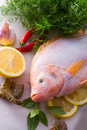Freshness reddens the Nile Tilapia Royalty Free Stock Image