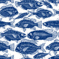 Freshwater fish endless vector pattern, nature and marine theme Royalty Free Stock Photo