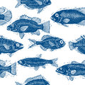 Freshwater fish vector endless pattern, nature and marine theme Royalty Free Stock Photo