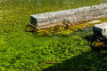 Freshwater joining the sea that appears green due to algae joins in boka kotorska bay montenegro Stock Image