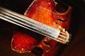 Fretboard with string of old shabby cello Royalty Free Stock Photo