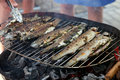 Fried barbecue grill trout fresh fish Stock Photos