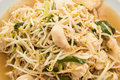Fried bean sprouts mix tofu thai chinese food Royalty Free Stock Image