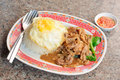 Fried beef with oyster sauce Royalty Free Stock Photo