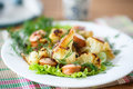 Fried cauliflower with sausages on a plate Royalty Free Stock Photo