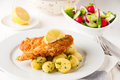 Fried chicken steak in wiener style with potatoes and vegetable salad Royalty Free Stock Photo