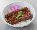 Fried Eel with plain rice in Japanese bowl on white background Royalty Free Stock Photo