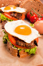 Fried egg fresh dark bread Stock Image