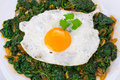 Fried egg on spinach plate of healthy Royalty Free Stock Image