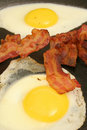 Fried eggs & bacon vertical Royalty Free Stock Photography