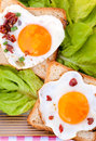 Fried eggs on the toast bread Royalty Free Stock Images