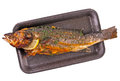 Fried European seabass (sea bass) on a dark tray Royalty Free Stock Photo