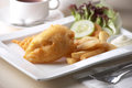 Fried fish and chips Royalty Free Stock Images