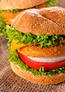 Fried fish fresh and fishburger sandwich Royalty Free Stock Image