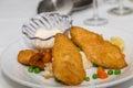 Fried Fish on Mashed Potatoes Royalty Free Stock Photo