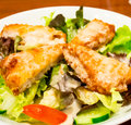 Fried fish salad 1 Royalty Free Stock Images