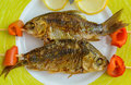 Fried fish (carp) on skewers with pieces pepper and lemon. The top view. Royalty Free Stock Photo