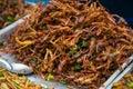 Fried grasshoppers at bangkok thailand Royalty Free Stock Images